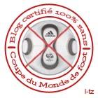 Blog certifié 100 % sans Coupe du Monde de Foot